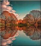 REFLECTIONS (ΔΗΜΗΤΡΗΣ ΦΑΣΟΛΗΣ)
